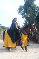 Yellow Knight 02 by Stock-gallery