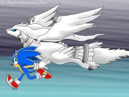 Sonic and Reshiram by shadowhatesomochao