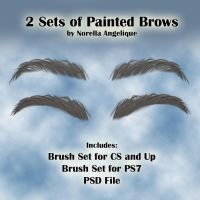 STOCK - Painted Eyebrows Brush by NorellaAngelique