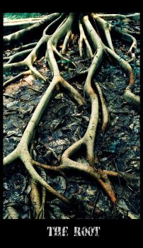 The Root by leo723