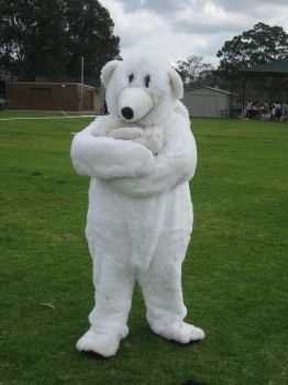 Yr 12 Muck Up Day - Polar Bear and Baby Bear! by I-Have-A-Jar-Of-Dirt