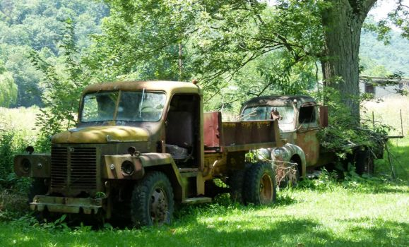 Old Trucks at Mathias by ecfield