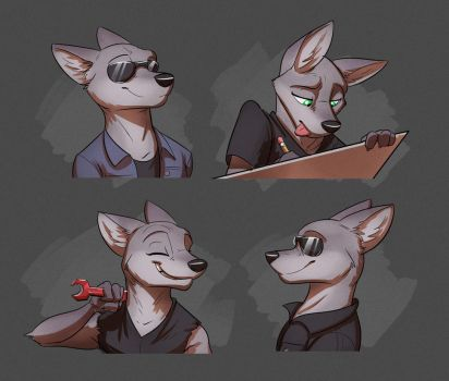 Commission: Cathleen Cannon's Expression Sheet by Temiree