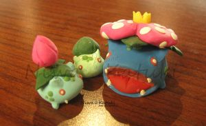 Bulba Set by Niwa-Katuki