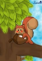 squirrel by notte