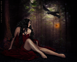 The Ravens Gift by Inadesign