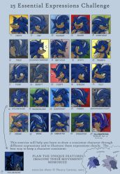 25... er 26 Expressions- Sonic by Swirlything