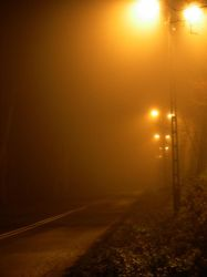 foggy street by zipper