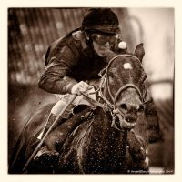 A Day At The Races -Hail Of Dirt by AndersStangl