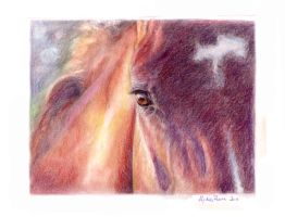 Horse Eye in Pastel by Lydia888