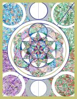 The Flower of Life and The Star Tetrahedron by PhableOmsri