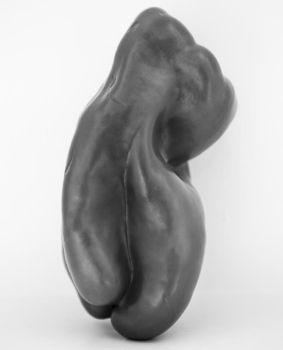 Red Pepper Tribute to Edward Weston by huitphotography