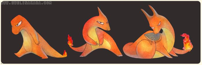 charmander and frenz. by cockrocket