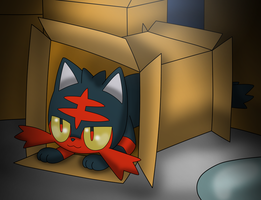 Littn in a box by Charly-sparks