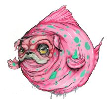 Pug Fish by sbelmarsh