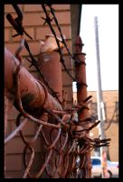 barb wire by an6el-of-death