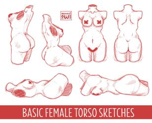 Female Torso - Basic Study Sketches by moondustowl
