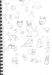Cats and Stuff by Skully-Keys