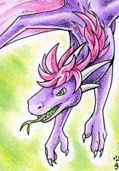 ACEO Drageta by jrtracey