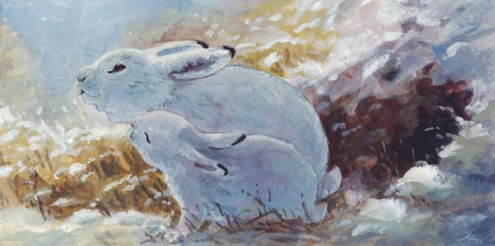 Holiday Card Project 2014: Hares by Camelid