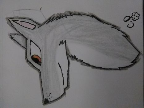 Daily Doodles #2: Wolf head by cookiedragon202