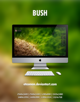 Bush by etcoman