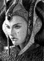 Throne Room Amidala  12/26/17 by khinson