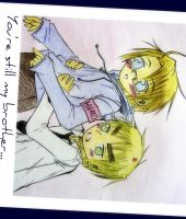 APH : Brothers by patamon-san