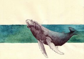 The whale and the blue by Lizzylot