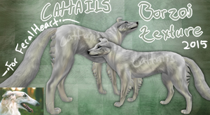 FH: Borzoi Texture || 50pts by CattaiIs