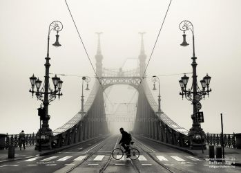 On a foggy day by torobala