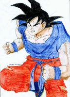 Dragonball - Son Goku 3 by parsek76