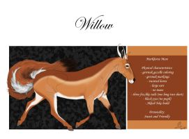 #162 Willow by casinuba