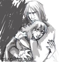 Snape and Hermione in Grey by usagistu
