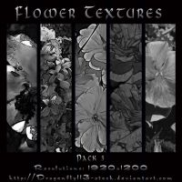 Flower Textures Pack 3 by BFstock