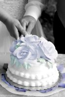 The Cake by ShutterBug07