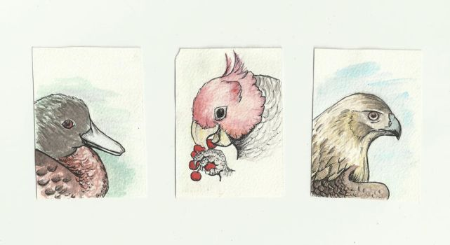 ATC cards part 1 by Imva