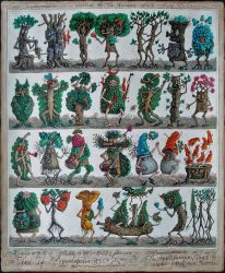 Forest encyclopiedia by MillerTanya
