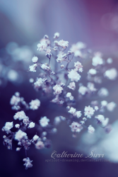 Miniature by apricot-dreaming