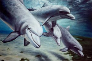 Dolphins by ShamiesArt