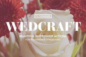 Wedcraft Wedding Photoshop Actions by filtergrade
