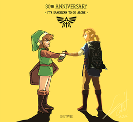 The Legend of ZELDA 30th ANNIVERSARY by Shutwig