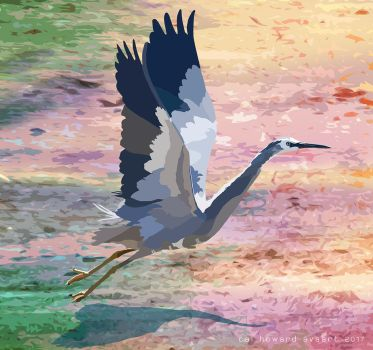 White face Poly Heron by AVAdesign