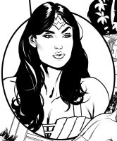 A little Wonder Woman Earth One snippet by YanickPaquette