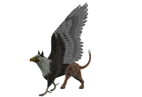 STOCK PNG gryphon by MaureenOlder