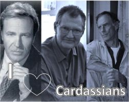 Everybody loves a cardassian by Meteorprime