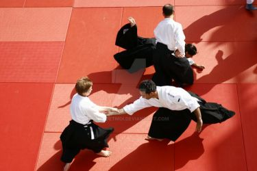 Aikido Training by Momoetmoi
