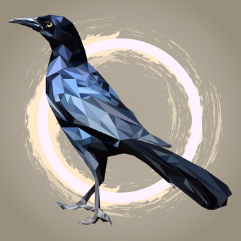 Grackle by Alyak1