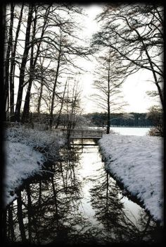 winter by 129a