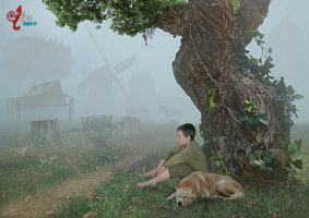 Fog in the morning - dheean by dheean